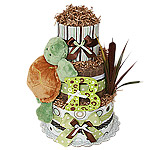 Green and Brown Turtle Diaper Cake