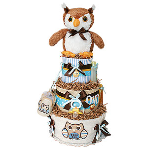 Blue and Brown Owl Diaper Cake